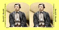 04218 - David E. Herold; A conspirator in the assassination of Lincoln [LC-DIG-cwpb-04218]
