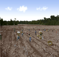 Slaves picking cotton in an Alabama Field 1s02973