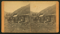 Group_in_front_of_a_log_cabin
