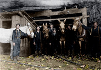 01058 - Young Drivers and Trapper Boy, Brown Mine, Brown, W. Va