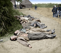 32912 - Dead Confederates collected for burial, near Mrs. Alsop's house, Spotsylvania, May 20, 1864