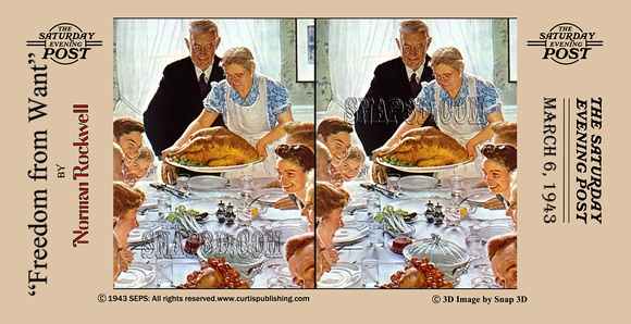 History In Full Color   3D Norman Rockwell Stereo Cards ... Freedom From Want Parody