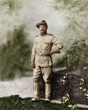 Col. Theodore Roosevelt - 36046