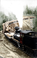 8b31110 - Logging Train in New Hampshire