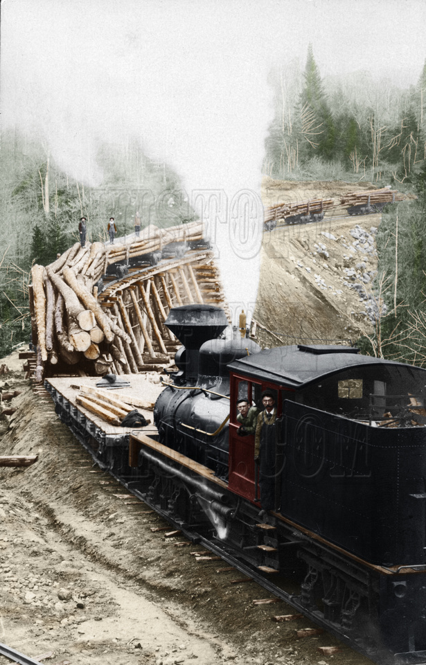 History In Full Color: Trains, Planes, Auto, Ships &emdash; 8b31110 - Logging Train in New Hampshire